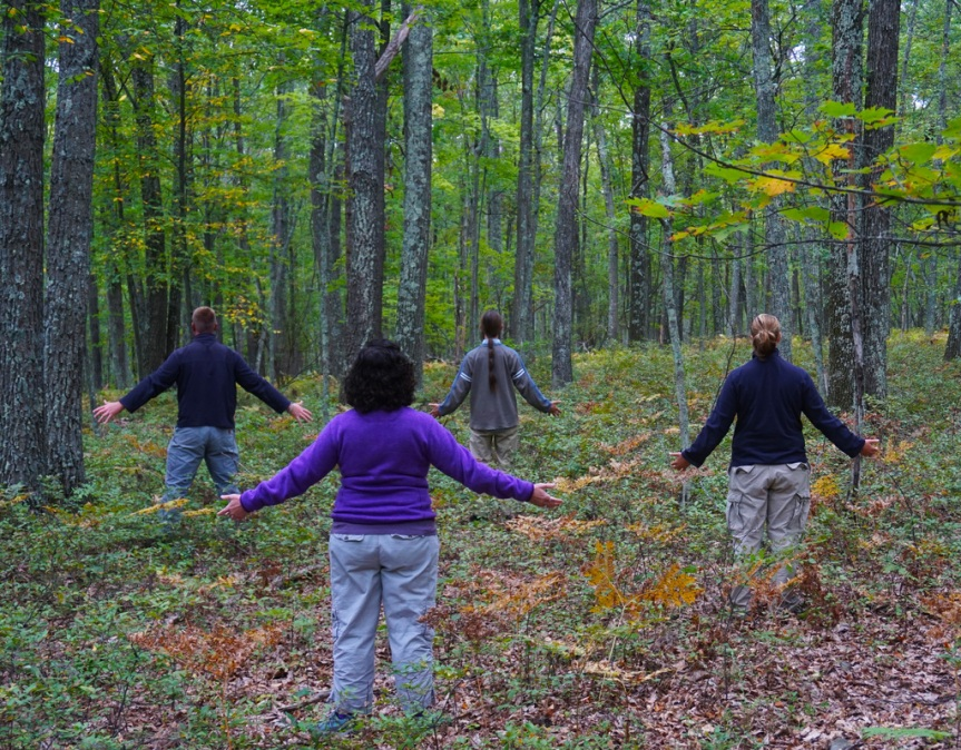 Forest Bathing Group