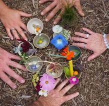 TLAW- Tea Ceremony on FB Walk- Amos Clifford Photographer