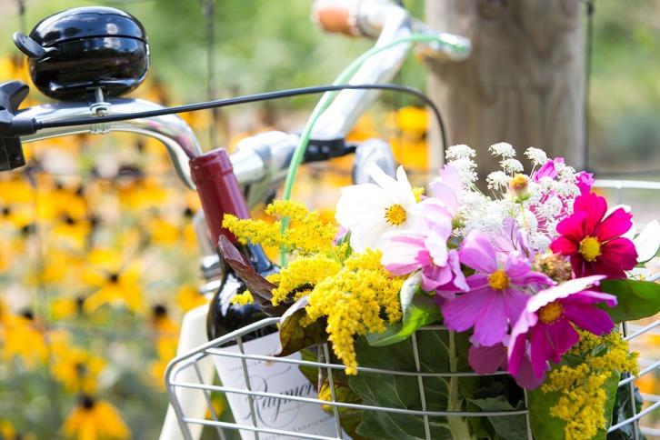 TLAW- Bike Basket- Andrea Killam Photography